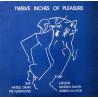 Twelve Inches Of Pleasure