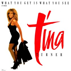 Tina Turner – What You Get Is What You See